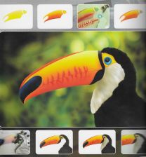 H & S Freehand Sjabloon Toucan Wildlife 410131