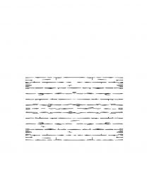 Vallejo Hobby Stencils: Wood Texture No 1 (1/35)